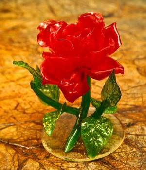 Роза на рассвете прозрачная