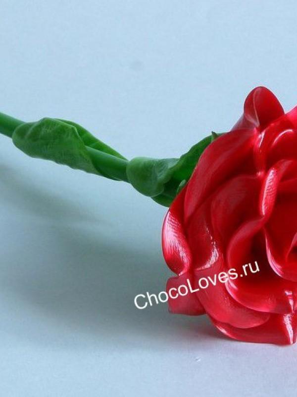 Карамельная роза