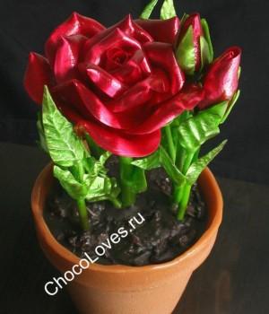 Оригинальный торт с карамельными розами